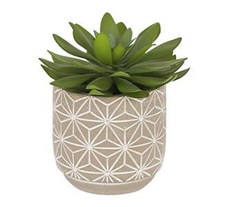 Kunst cactusplant Zelena