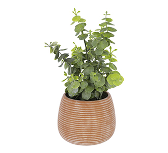 Kunstmatige eucalyptus in bruin pot