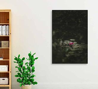 Art of nature 003 98x148