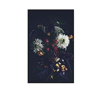 Botanical stories 002 70x118