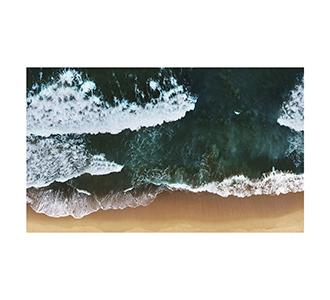 Art of nature 010 118x70