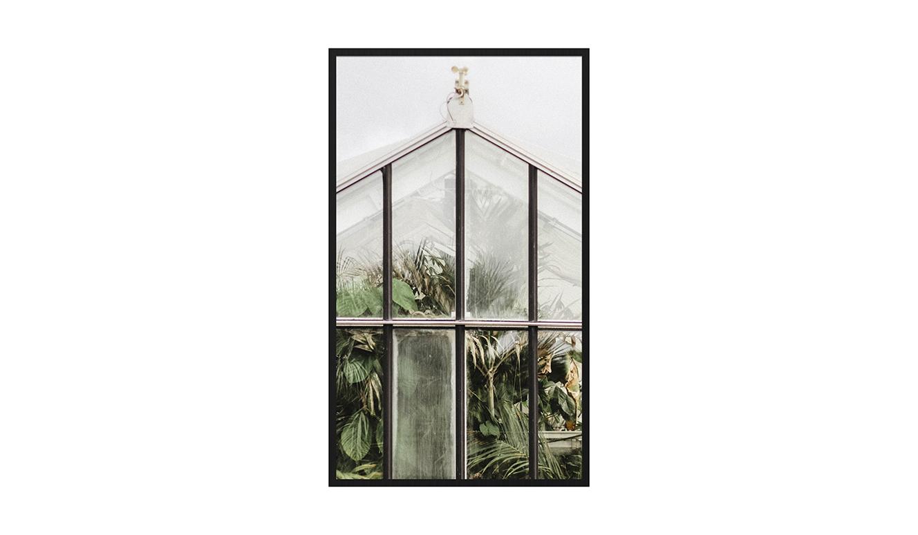 Botanical stories 012 70x118