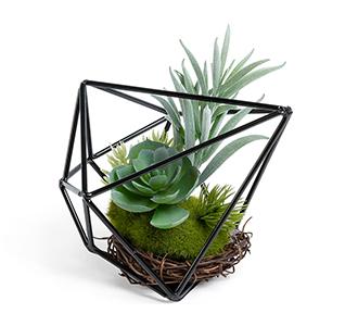 Kunstmatige vetplants mix in metalen frame
