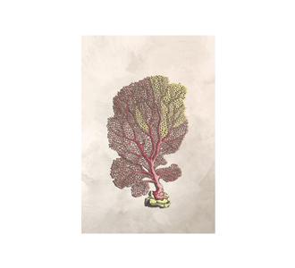 Botanical stories 019 20x30