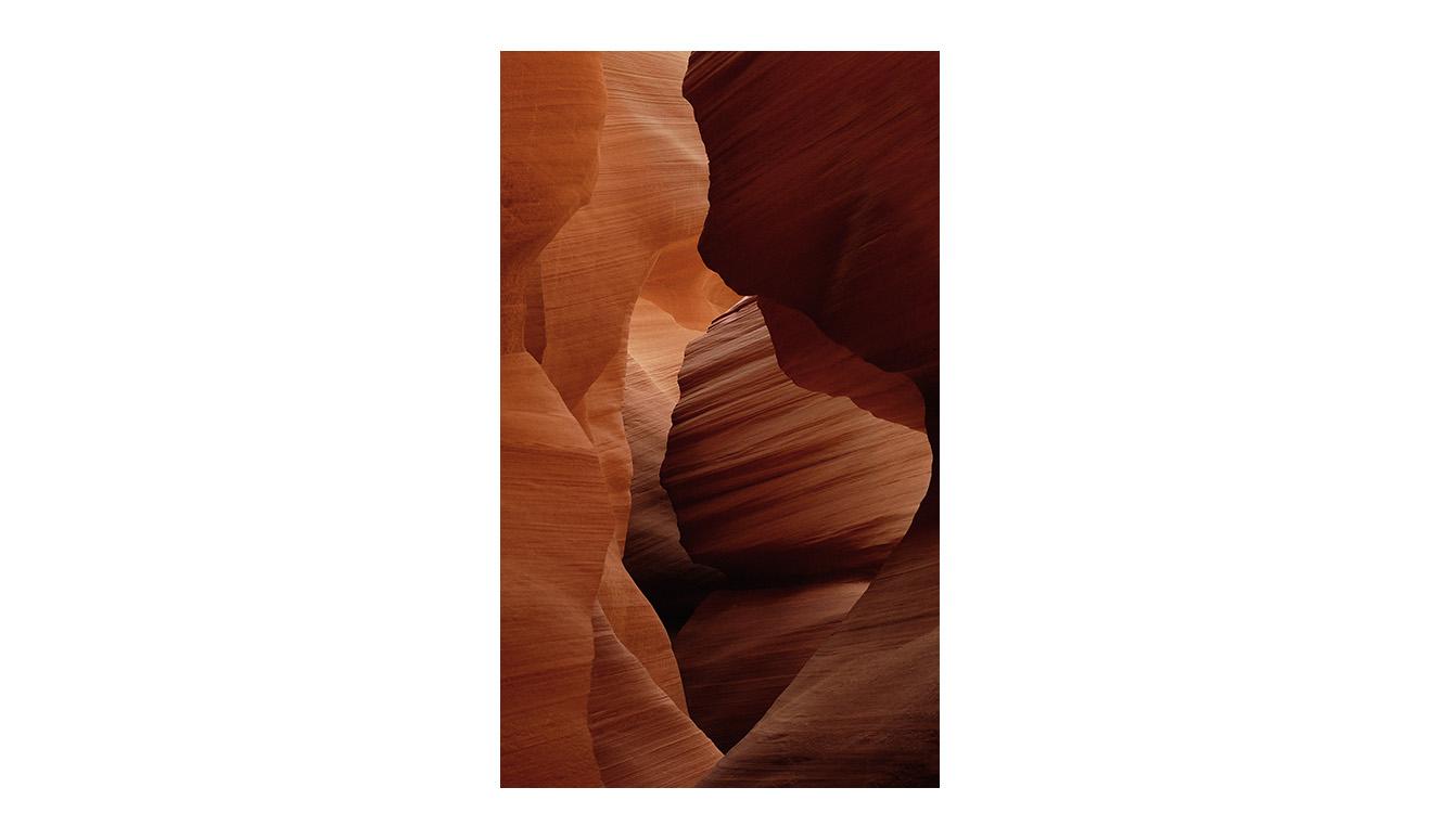 Art of nature 007 70x118