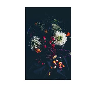 Botanical stories 011 70x118