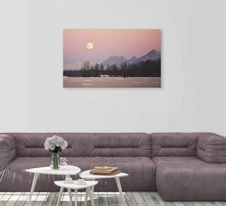 Art of nature 002 118x70